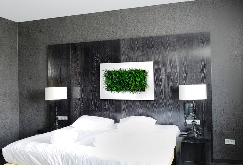 livepicture indoor green raumbegr nung. Black Bedroom Furniture Sets. Home Design Ideas